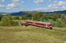 TFC-78-3203-3-Maruntitu-18-08-2014-Photo-Marcel-van-Ee